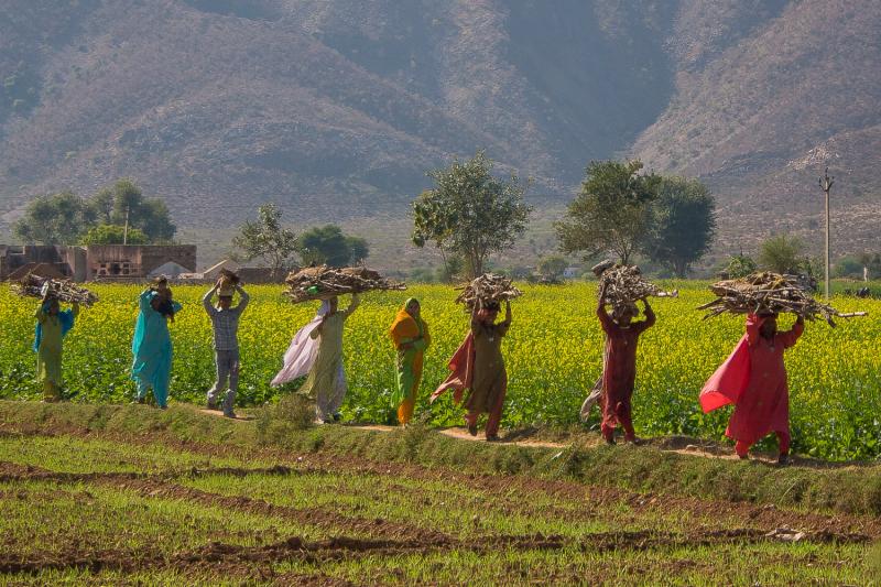 25-India-