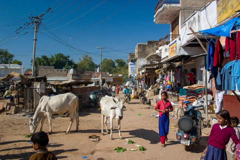 31-India-