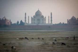 17-India-