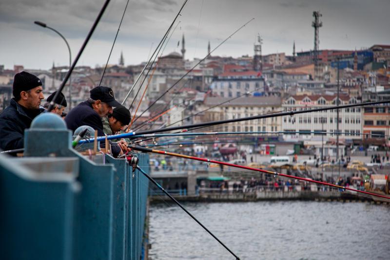 Fishing from the Bridge