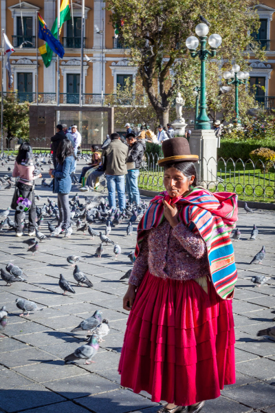Feed the Pigeons