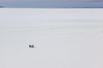 Salt Flats (II)